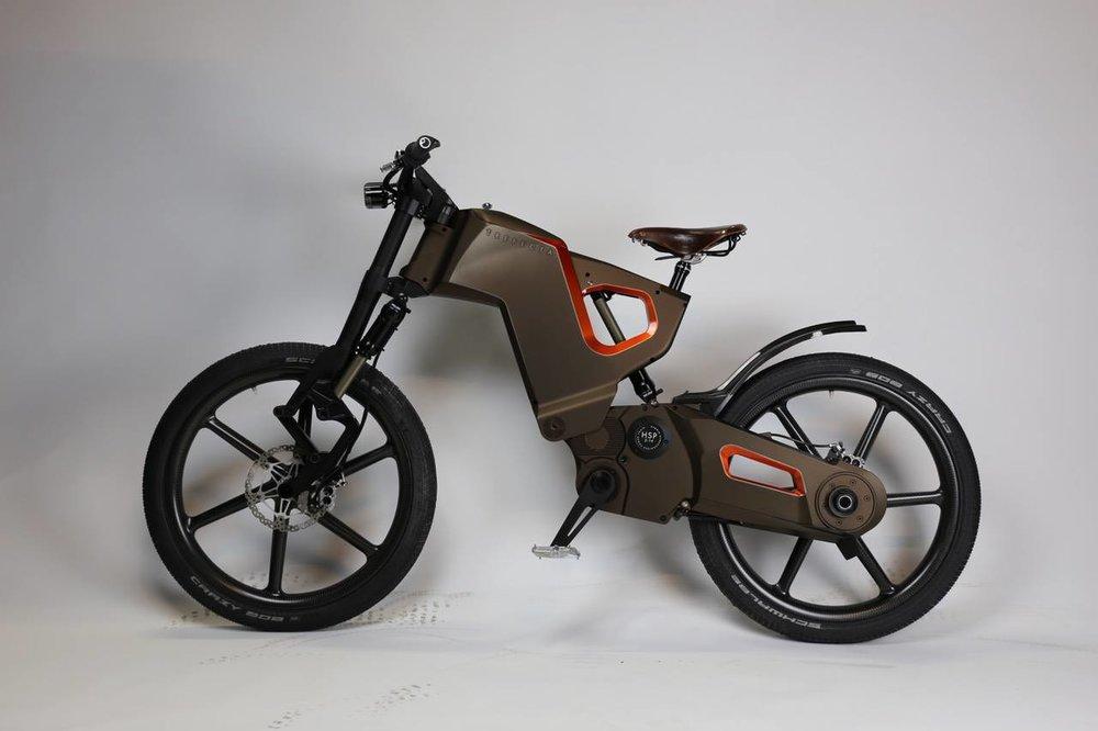 Elektrische Mountainbike Fietsen Van Stenis